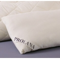 Organic Merino LambsWool Pillows - Jersey Covers